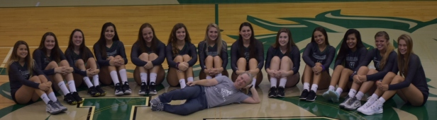 2018 lrhs volleyball team