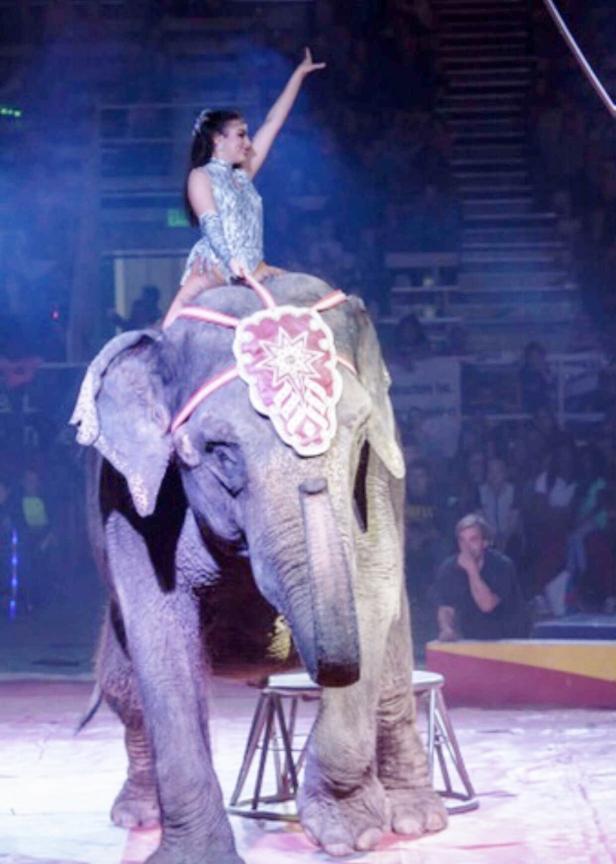 circus girl on elephant