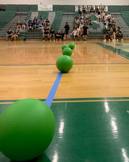 dodgeball 2019