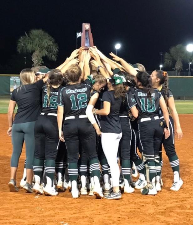 softball district champs 2019