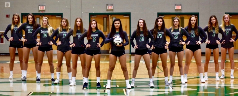 2019 Mustangs Volleyball