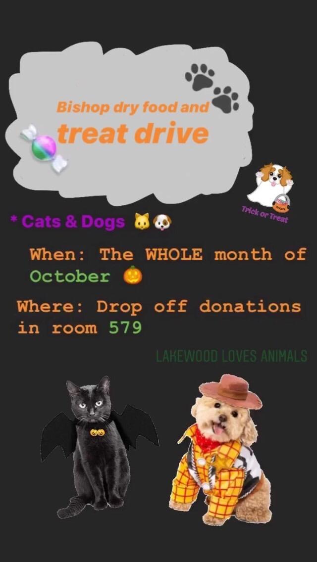 lakewood loves animal halloween flyer