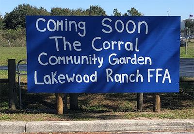the corral garden 2020